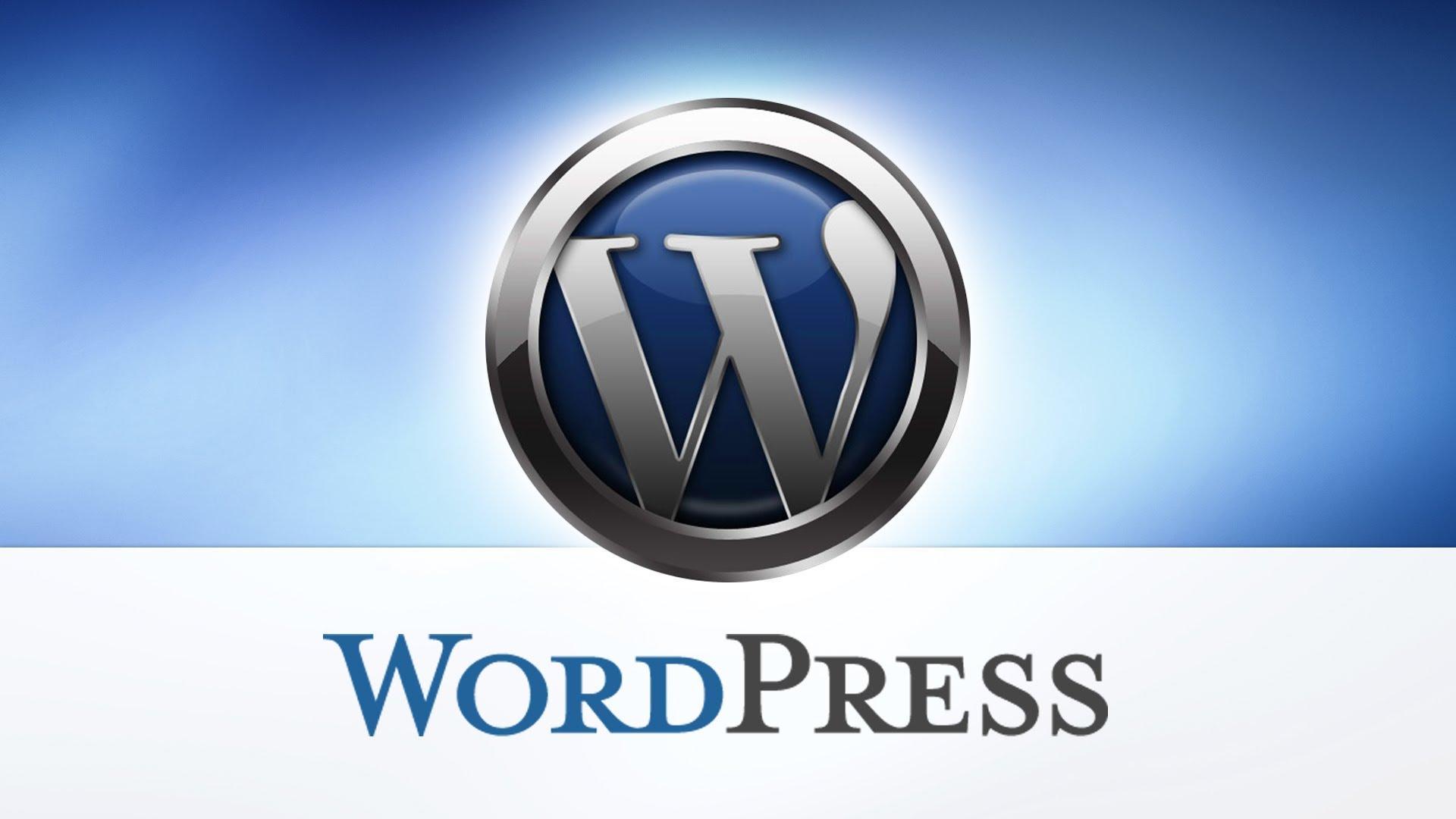 Wordpress Excerpt box label customisation