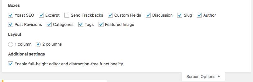 Excerpt check box in the WordPress Admin